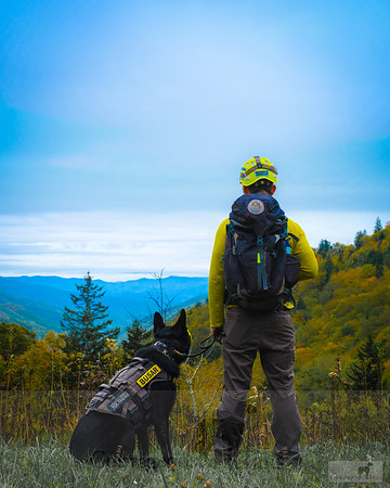K-9 Kato, Great Smokey Mountains National Park, TN