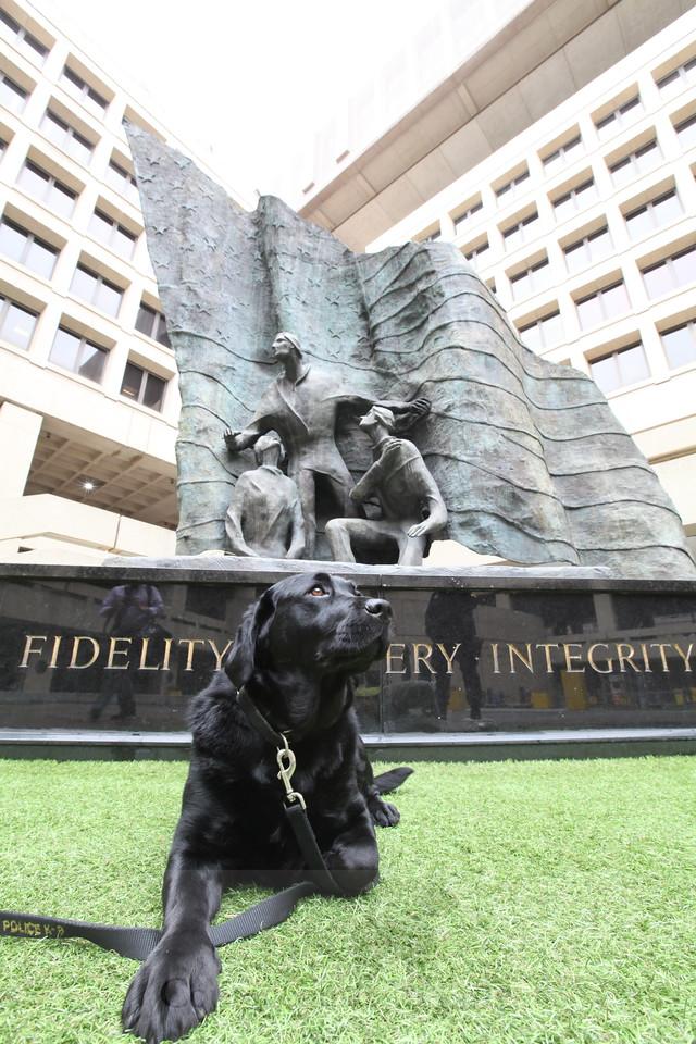 Cassia, FBI Headquarters, Washington, DC