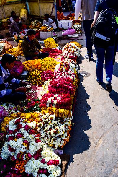 Jaipur flower markets
