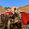 Elephants and their drivers