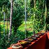 Goa - Savoi Plantation meal