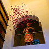 rose petal welcome to our hotel