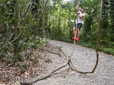 Travel; Brazil; Brasilien; Rio de Jr.; Parque Lage;