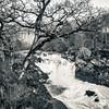 Rogie Falls, near Contin