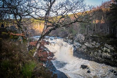 Rogie Falls, near Contin, Inverness