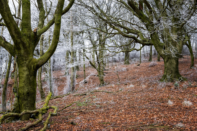 The Peak District - Edale