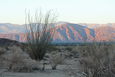 Early evening late catches the mountains to the north and east of the valley.  Do you see the Black Tailed Jack Rabbit ?
