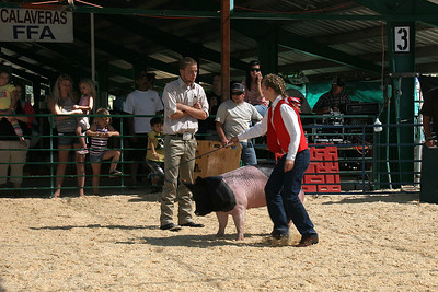 The judge also asked questions of each owner, and somehow the answers provided were also used to judge the pigs.
