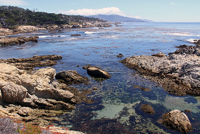 This view is south looking along the famous 17-Mile Drive in Pacific Grove.  Point Lobis is the point of land visible in the distance on the horizon.