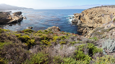 "Now we're at Sandhill Cove on Point Lobos.  Point Lobos has been called the ""greatest meeting of land and water in the world"" by landscape artist Francis McComas ... debatable, perhaps, but it is a real contender."