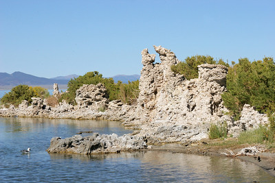 "According to Wikipedia:  ""Tufa is a variety of limestone, formed by the precipitation of carbonate minerals from ambient temperature water bodies. Geothermally heated hot-springs sometimes produce similar (but less porous) carbonate deposits known as travertine."""