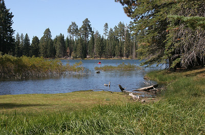 And now we arrive in Lassen Volcanic National Park.  This is Manzanita Lake, near our campsite.
