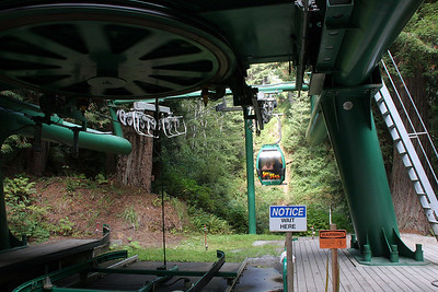 Trees of Mystery includes a cable car ride through the tree tops, up to the top of their property for a fine view.
