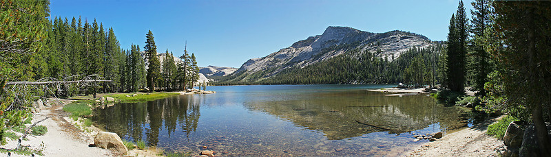 Multi-image panorama of Tenaya Lake, not far from Tuolumne Meadows.