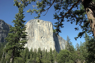 El Capitan, from down in the valley.
