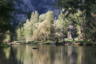 Late afternoon light on Merced River.