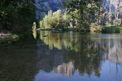 Late afternoon light on the Merced River.