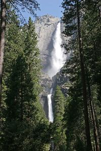 Yosemite Falls, Upper and Lower.