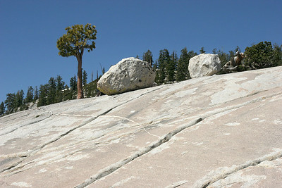 Glacial erratics at Olmsted Point on the Tuolumne road.