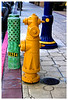 This is typical at downtown Long Beach. The color of the fire hydrants are yellow, vent pipes are green and the lamp posts are blue with yellow accents.