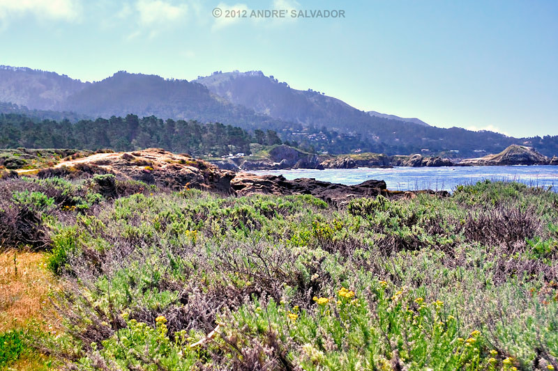 A coastal view of Monterey Bay.