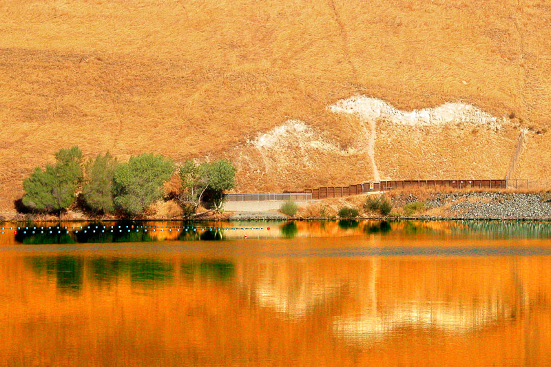 A view of the golden hills sorrounding the reservoir of Contra Loma Regional Park, making the water golden too.