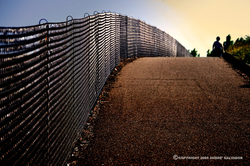 Contra Loma Regional Park's wrough iron fence and the trail towards the entrance.