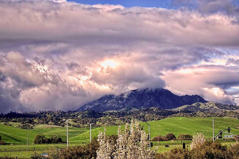 A view of Mount Diablo during spring taken from Sandcreek Road and Deer Valley Road area.
