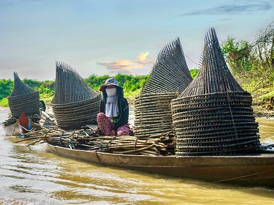 Traditional fishing traps in Cambodia.