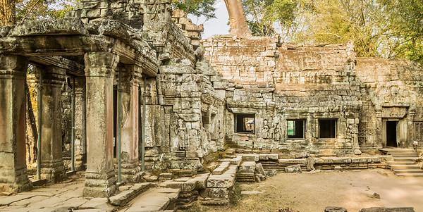 Ta Prohm Temple in Cambodia.