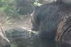 20170815-Zoo-6535