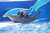 2017-09-25-SeaWorld-7136