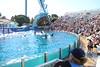 2017-09-25-SeaWorld-7146