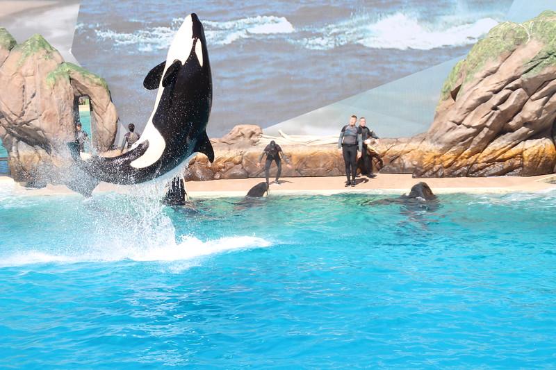 2017-09-25-SeaWorld-7111