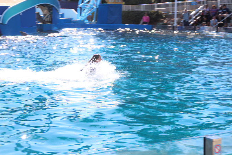 2017-09-25-SeaWorld-7135