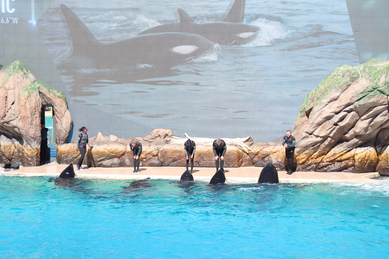 2017-09-25-SeaWorld-7107