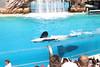 2017-09-25-SeaWorld-7115