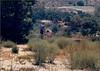 19880700-SteckleParkSantaPaula-0133