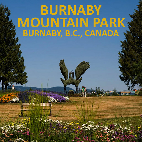 Burnaby Mountain Park's center piece shrub sculpture.