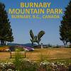 Burnaby Mountain Park's center piece shrub sculpture.