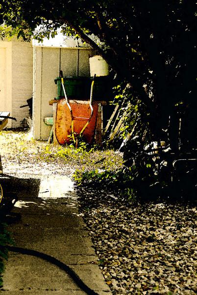 _DSC4636-Back-Yard2web