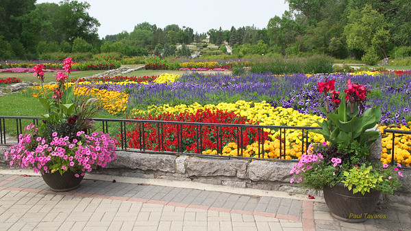 International Peace Garden, MB, Canada