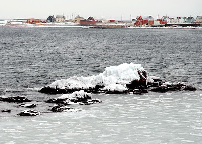 Newfoundland 073