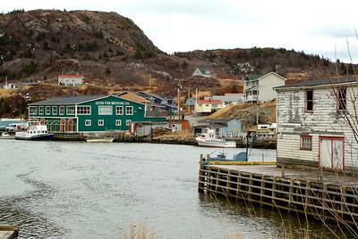 Newfoundland 5153