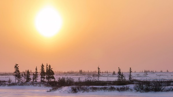 A cold winter landscape in northern Canada, as the atmospheric phenomenon known as a sun dog turns the sky orange near Churchill, Manitoba.