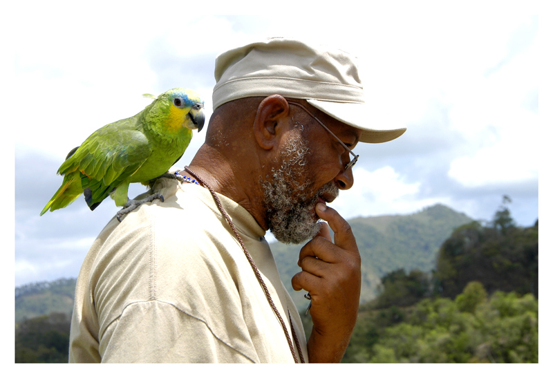 He tries to project himself as a philospher, poet and artist, talking continously to his parrot. His oil paintings are layed out on theground for sale.