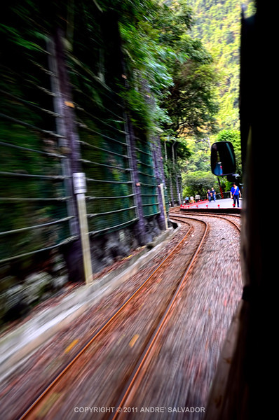 A view while riding the old and narrow logging carts.