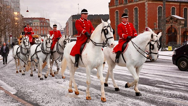Royal New year Tradition 2016,  Nytårstaffel 2016