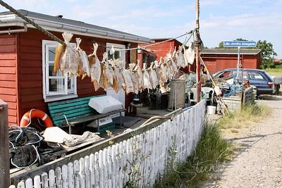 Denmark; Hals; DK;