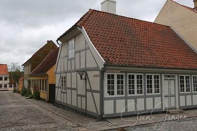 Denmark; Odense; DK;